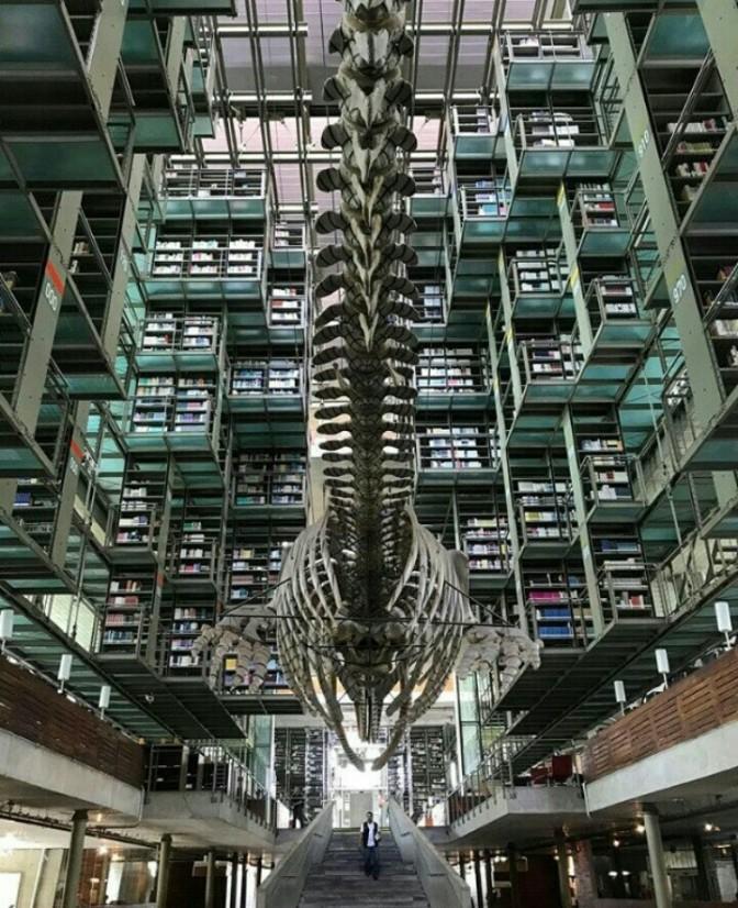 Biblioteca Vasconselos; -Ciudad de México.